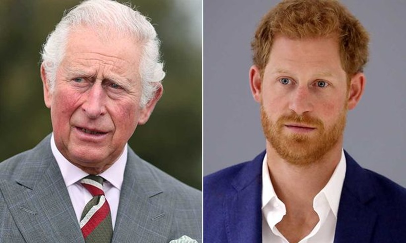 Prince Harry Was Snubbed By Prince Charles Because Of A Secret Leak Involving Camilla Parker-Bowles - US Daily Report